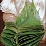 La jeune fille présente des feuilles de bétel à ses parents.