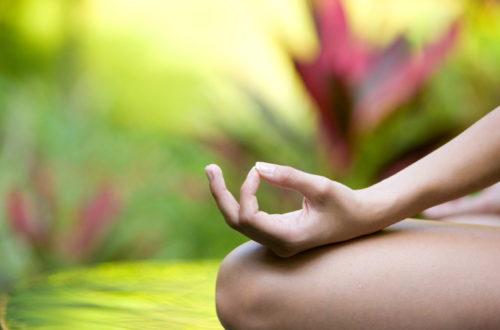 Article : Le yoga de Dharsha
