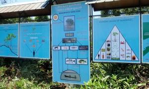 Programme de sensibilisation à Ambalantota, organisée par Seacology