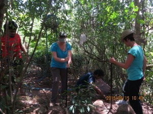 Equipe au travail, pour planter une trentaine de pieux.